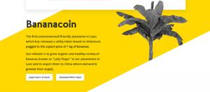 Что такое Bananacoin, и почему бананы связаны с блокчейном