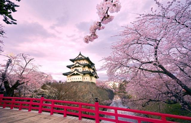 В Японии прикрыли еще 2 криптовалютные биржи