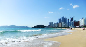 Южная Корея хочет открыть свою «Криптодолину»