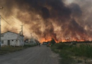 Пожар бушует в Кумженской роще в Ростове-на-Дону