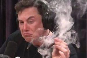 Илон Маск с косяком стал мемом