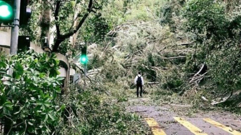 тайфун Мангхут в Китае