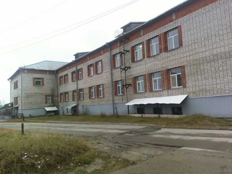 Елена Городецкая Томск Владимир Сотников конфликт