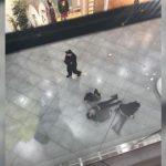 Падение девушки в ТЦ «Хорошо»