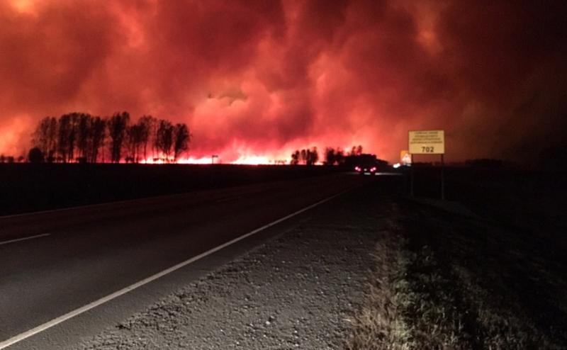 пожар на границе с Алтайским краем