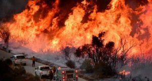 Пожар в Калифорнии — последние новости